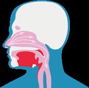 Schemat pokazuje, jak substancje drażniące dostają się do dróg oddechowych, powodując kaszel